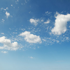 Fototapete - white fluffy clouds on sky