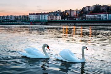 La Saône près de la confluence avec le Rhône à Lyon