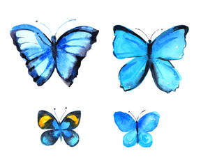 Set of four blue butterflies, watercolor illustration on white background
