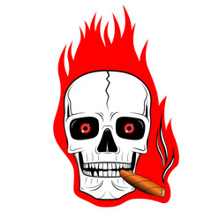 Skull illustration - flames