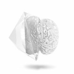 3D Brain in geometric glass