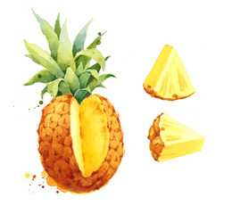 Watercolor Pineapple and Wedges Hand Drawn Fruit Food Illustration Set isolated on white background