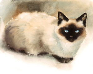 Watercolor Siamese Cat Hand Drawn Pet Portrait Illustration