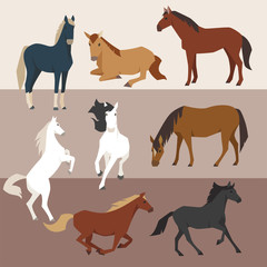 various breeds house active poses illustration set