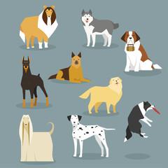 big size dogs various breeds flat design illustration set