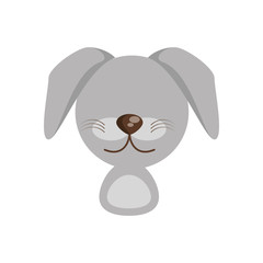 head cute dog animal image vector illustration eps 10