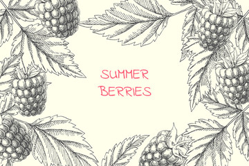 Vector floral background with summer berries. Vintage botanical hand drawn illustration of raspberry branches