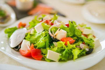 Greek salad in plate