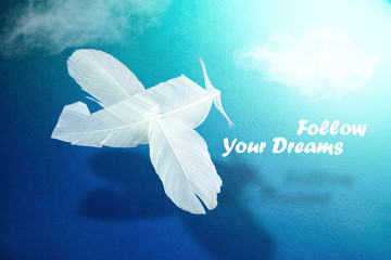 """Image of airplane hovering in clouds from feathers of white bird with a shadow and inscription """"Follow your dream"""" on blue background. Concept of dream of inspiration and aspiration."""