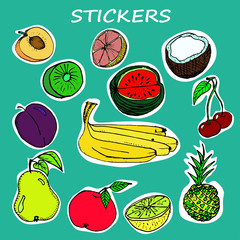 Vector Cute Fruits Stickers Collection. Hand Drawn Illustration.