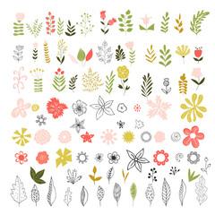 Set of vintage flowers, herbs and leaves.
