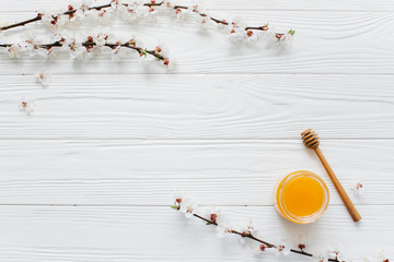 Bank of honey, spoon and blossom branches on a white wooden background.