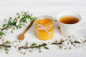 Bank of honey, spoon, blossom branches and cup of hot tea on a white wooden background.