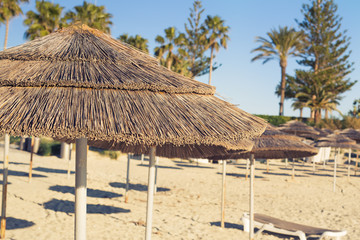 Decorative umbrellas made of palm branches on the background of the beach