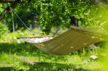 Summer garden with hanging hammock for relaxation