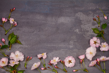 Flower frame on gray shabby chic background. Springtime blooming. Pink spring flowers. Top view with copy space. Flat lay