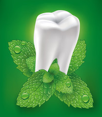 white tooth and whitening toothpaste with mint