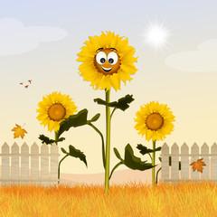 Sunflowers field cartoon