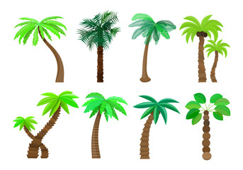 Palm tree isolated in cartoon style set on a white background Vector Illustration