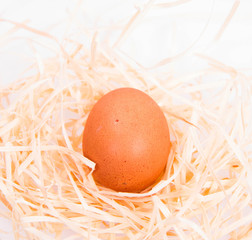 Chicken egg on some hay on a white background