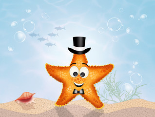 funny starfish in the ocean