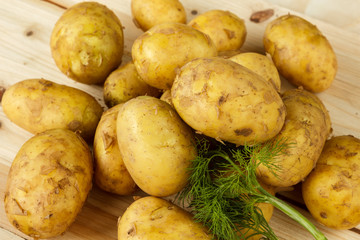 Raw new potatoes and a bunch of dill on a wooden background