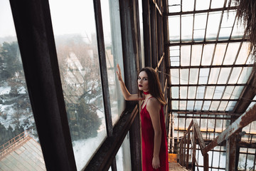 Beautiful young woman standing near the window in greenhouse