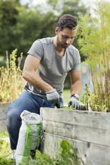 Man planting in vegetable garden