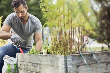 Mid adult man planting in urban garden