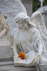 Angel statue with one flower
