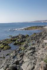 Green rocks on the coastline.