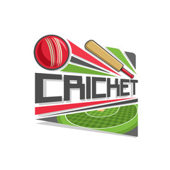 Vector logo for Cricket game: red ball hitting of bat, flying on trajectory on stadium, on pitch field checkered grass pattern, abstract clip art icon with title text - cricket, for sports tournament.