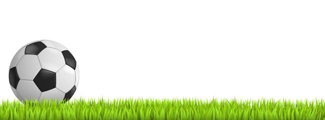 Fußball auf Rasen freigestellt