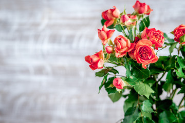 red roses in vase on wall background mock up