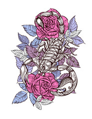 Tattoo scorpion and rose