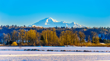 Winter landscape of the Fraser Valley in British Columbia, Canada with the dormant volcano Mount Baker in the state of Washington, USA in the background