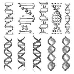 Vector symbols of dna helix or molecular chain