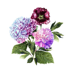 Handwork watercolor illustration. Blue hydrangea, dark pink mallow and pink peony. Bouquet with flowers on white background, isolated watercolor illustration. Invitation. Wedding card. Birthday card.