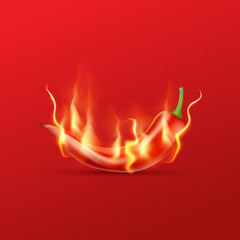 Red hot chili pepper with flame on a red background. Hot and spi