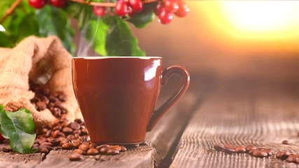 Fototapete - Coffee. Cup of hot coffee closeup and real coffee beans over wooden background. 4K UHD video 3840X2160