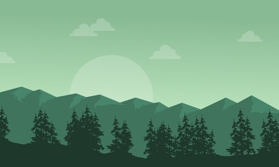 Silhouette of mountain with spruce scenery