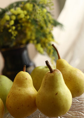 pears yellow close up photo with vase and mimose