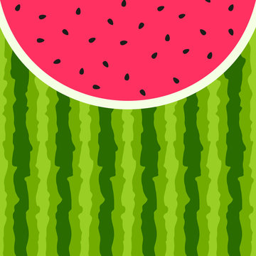 Watermelon vector background with seed and skin texture
