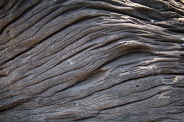 brown wooden texture. Wood Texture Background