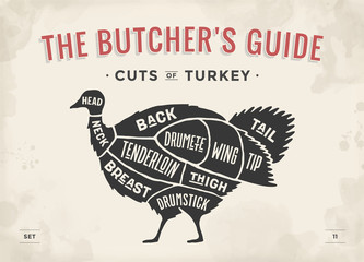 Cut of meat set. Poster Butcher diagram, scheme - Turkey. Vintage typographic hand-drawn turkey silhouette for butcher shop, restaurant menu, graphic design. Meat, poultry theme. Vector Illustration