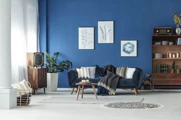 Blue and wooden room