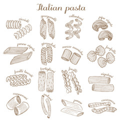 vector set of different pasta shapes