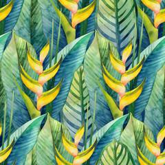 Foto op Plexiglas Paradijsvogel Watercolor heliconia pattern