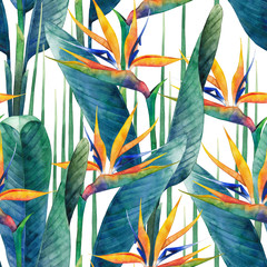 Foto op Canvas Paradijsvogel Watercolor strelitzia pattern