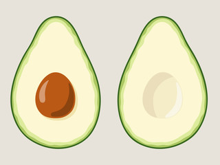 Sliced avocado, two halves of green ripe avocado with seed isolated on background. Vector illustration set for your designs.